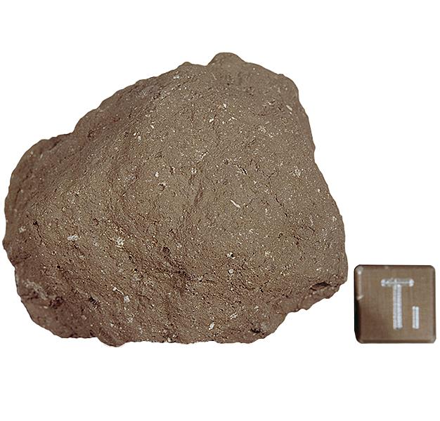 10067 regolith breccia virtual microscope for Soil under microscope